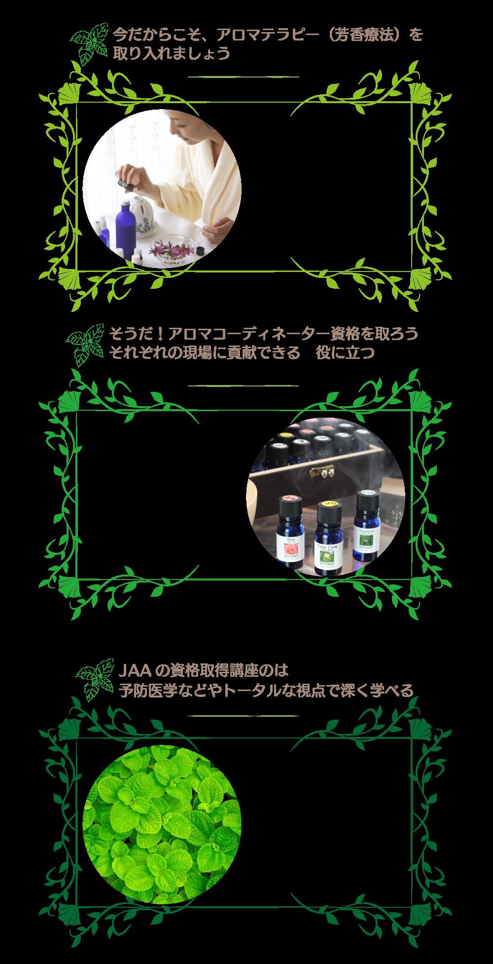 ミントグリーン アロマ資格詳細改定20200103